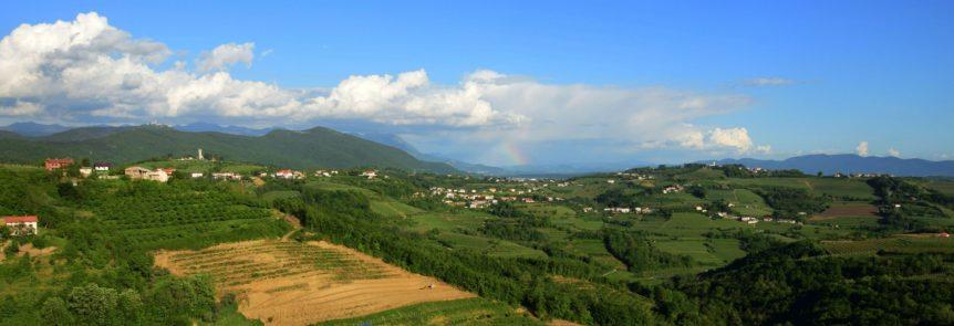 Wine region near inOrbit conference